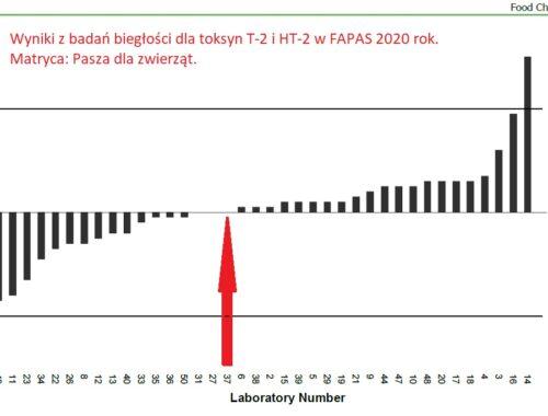 Wyniki FAPAS dla T_2 HT_2 Prognosis XI 2020